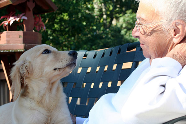 If your elder Mom or Dad is transitioning to long-term care adding a pet to the caregiving team can be a huge benefit for both your parent and the animal.