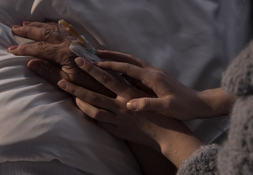 Dementia Care: Palliative Care and Pain Management